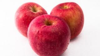 流行は周期的にやってくる感染症。2015年はりんご病の流行期。
