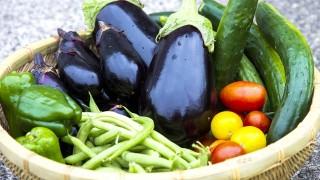 紫外線から身を守るために、食べ物自身が持っている抗酸化パワーなどを活用する。
