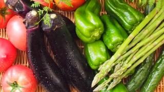夏の体調不良予防に食べたい食べ物とその栄養の効果〜野菜編〜